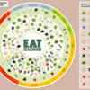 Can you eat seasonal food in winter?