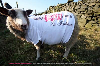 Ethical fashions