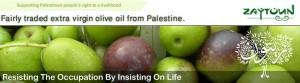 Zaytoun - fairtrade, organic olive oil