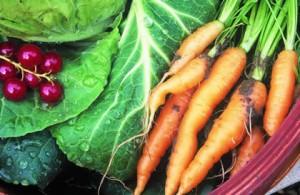 home-grown-vegetables