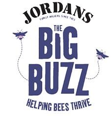 jordans-big-buzz