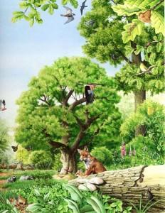 woodland_scene