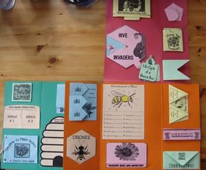 honeybee-lapbook