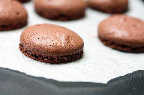 chocolate-macaroons