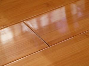 bamboo-floor