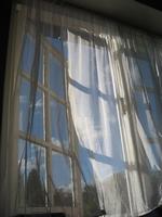 south facing window